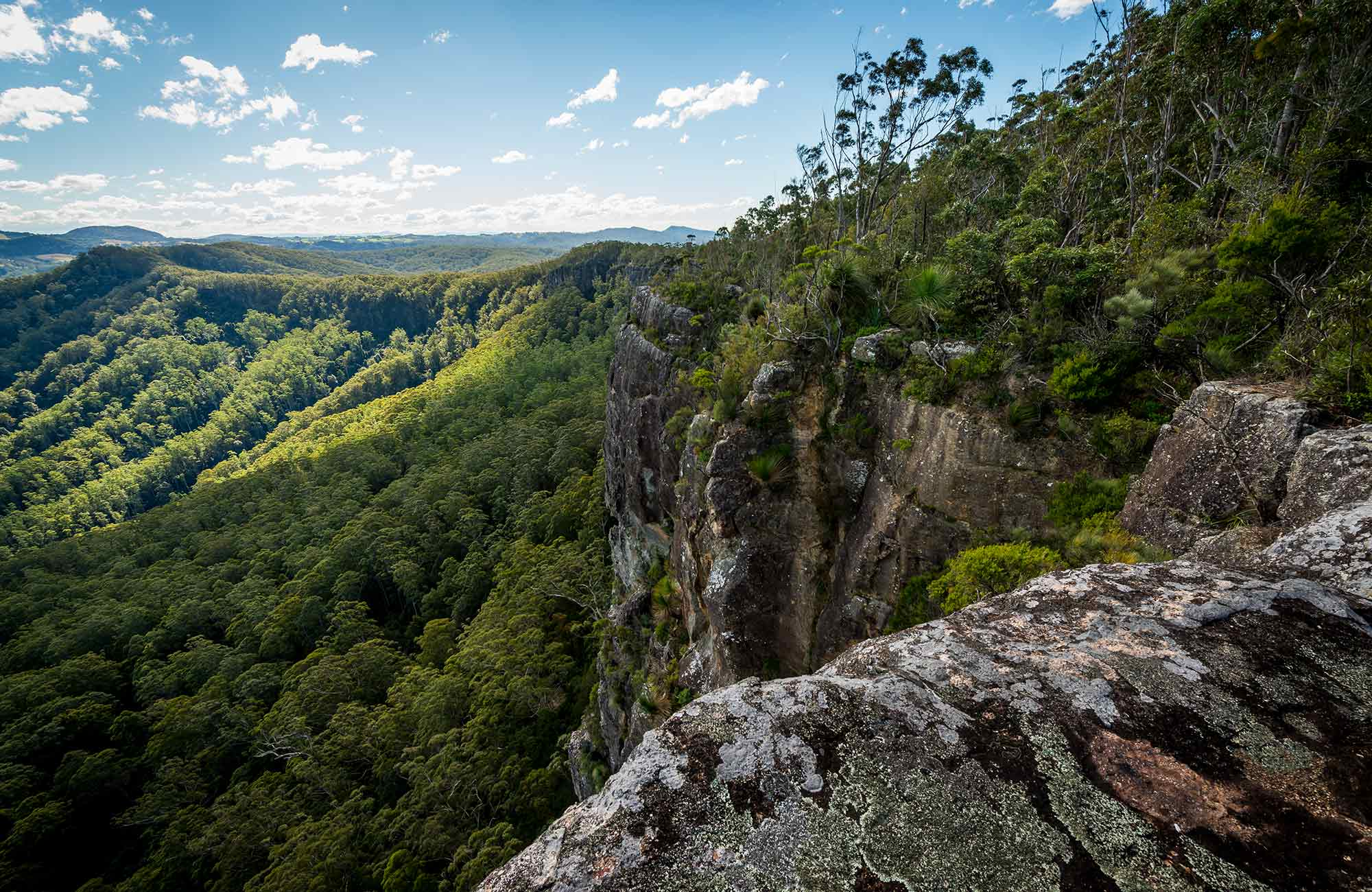 Coorabakh National Park. Photo: John Spencer
