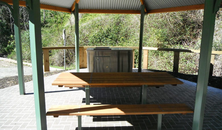 Hidden Treasures picnic area, Copeland Tops State Conservation Area. Photo: Brent Mail