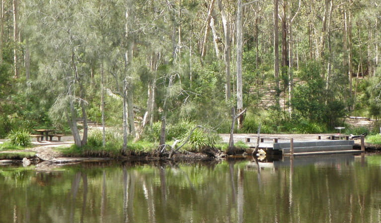Wandandian Creek picnic area, Corramy Regional Park. Photo: D Duffy