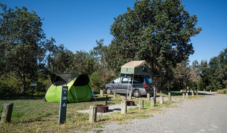 A tent and rooftop tent pitched at a campsite in Crowdy Gap campground, Crowdy Bay National Park. Photo: Rob Mulally/DPIE
