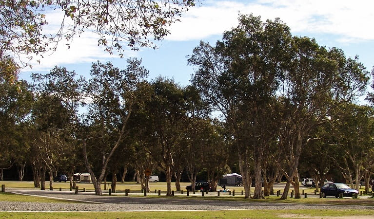Tents and campervans at Diamond Head campground, Crowdy Bay National Park. Photo: Taylor LoMonaco