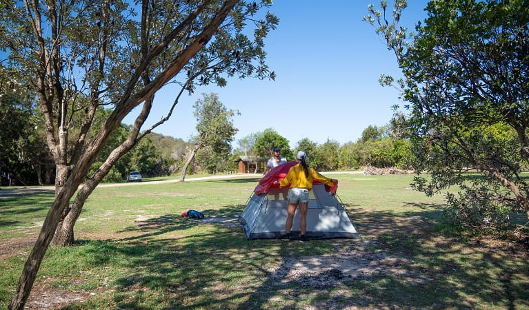 Campers setting up a tent at Kylies Beach campground, Crowdy Bay National Park. Photo: Rob Mulally/DPIE