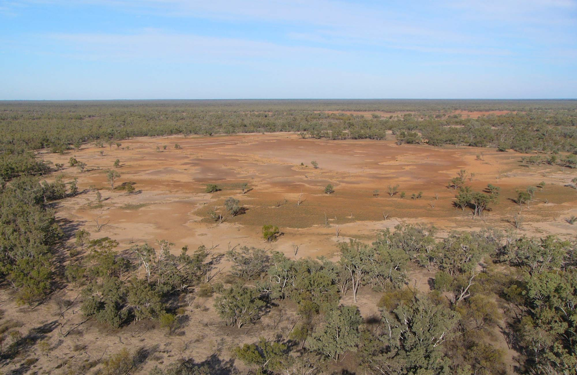 Culgoa Claypans, Culgoa National Park. Photo: NSW Government