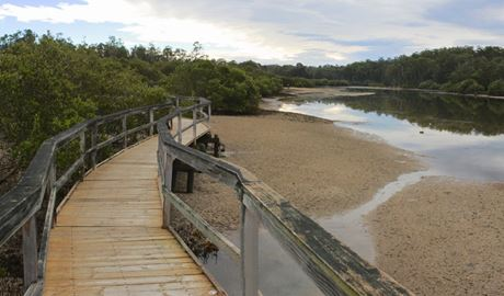 Boardwalk, Cullendulla Creek Nature Reserve