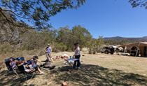 Bendethera Valley campground group, Deua National Park. Photo: Lucas Boyd Copyright:NSW Government
