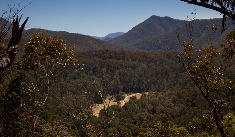Bendethera Valley campground, Deua National Park. Photo: Lucas Boyd Copyright:NSW Government
