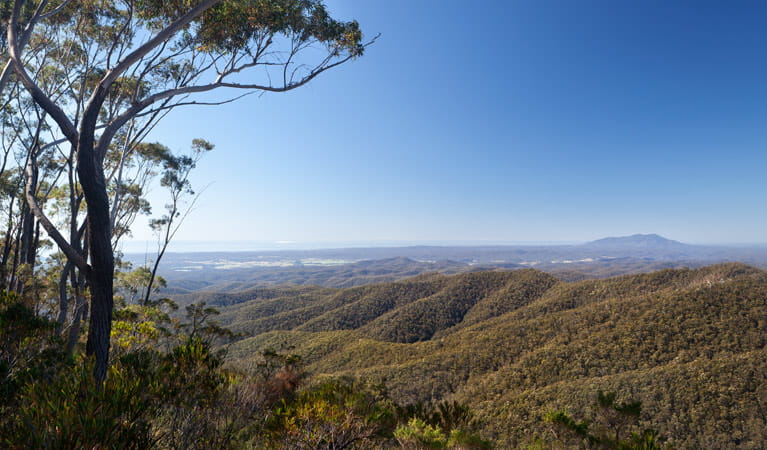 Hanging Mountain lookout, Deua National Park. Photo: Lucas Boyd