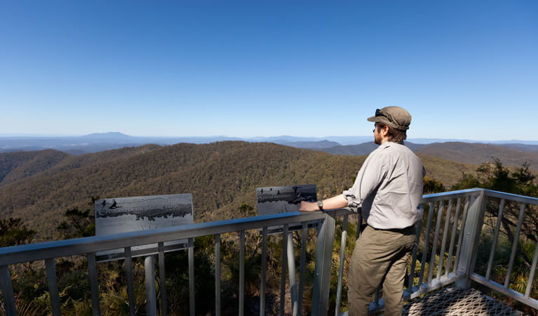 Hanging Mountain lookout scenery, Deua National Park. Photo: Lucas Boyd