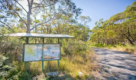 10B cycling trail, Dharawal National Park. Photo: Nick Cubbin
