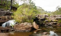 Iluka Creek, Dharawal National Park. Photo: Lucas Boyd