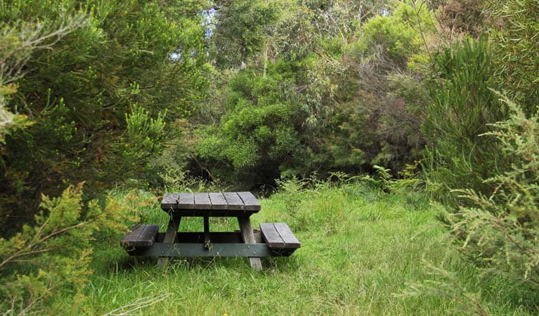 Maddens Creek picnic area. Photo: John Yurasek