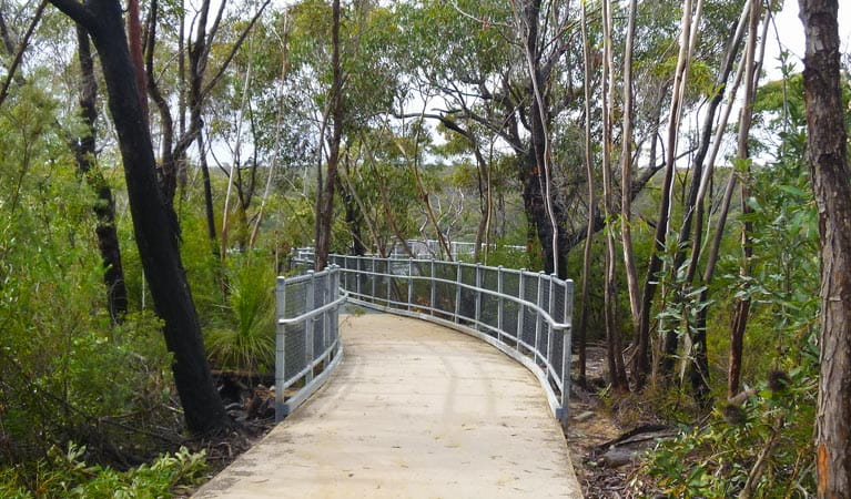 O'Hares Creek lookout walking track, Dharawal National Park. Photo: V Harnadi