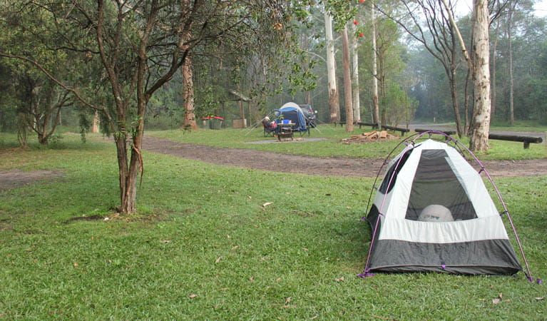Tent in Mill Creek campground, Dharug National Park. Photo: John Yurasek/DPIE