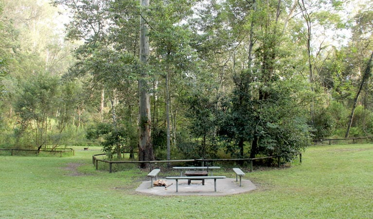 Mill Creek campground picnic benches. Photo: John Yurasek