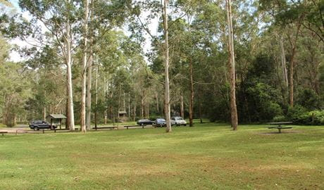 Mill Creek picnic area, Dharug National Park. Photo: John Yurasek