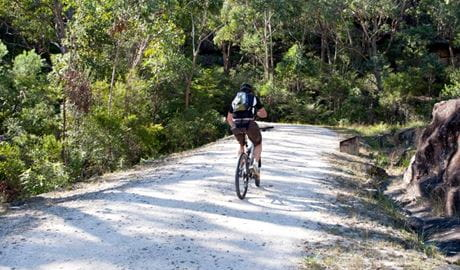 Cyclist on the Old Great North Road Bike Road. Photo: David Benson