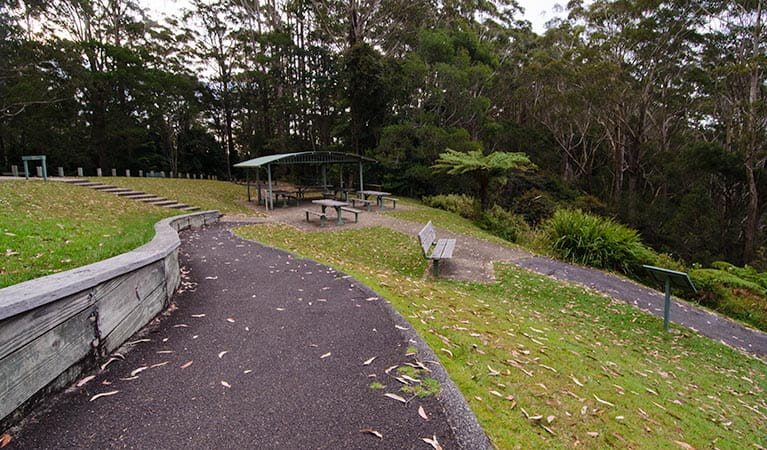 Dooragan picnic area, Dooragan National Park. Photo: John Spencer/NSW Government