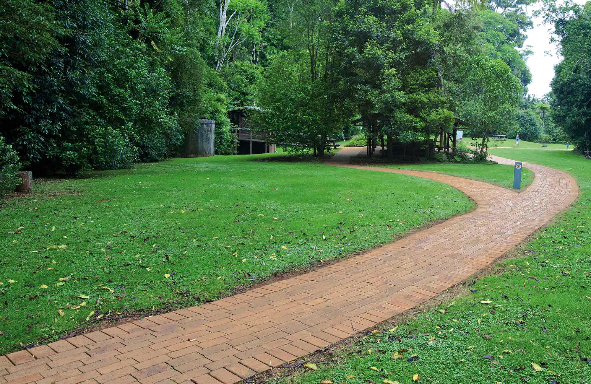 Glade picnic area. Photo: Rob Cleary