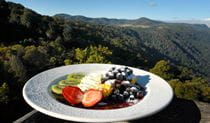 Canopy Cafe, Dorrigo National Park. Photo: NSW Government