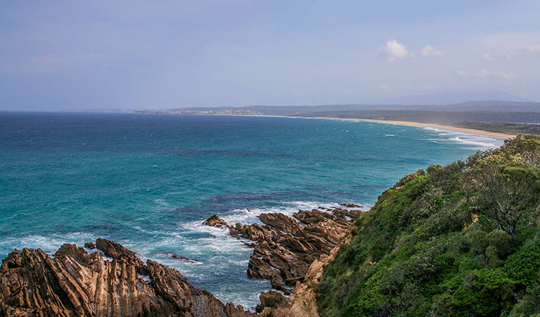 1080 Beach, Eurobodalla National Park. Photo: Christina Bullivant