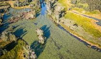 Aerial view of creek in Everlasting Swamp National Park. Photo: John Spencer/OEH