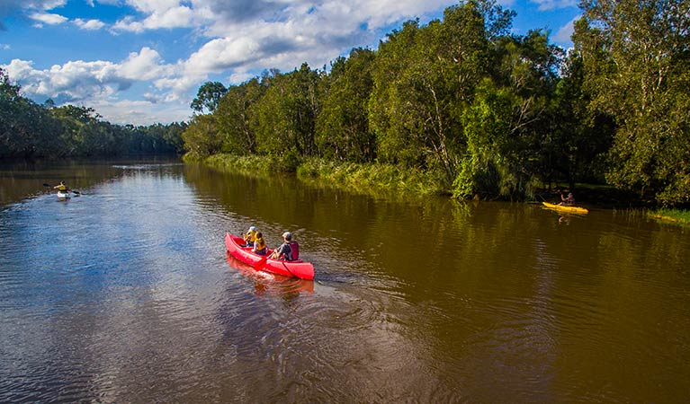 Family canoeing in Everlasting Swamp National Park. Photo: Jessica Robertson/OEH