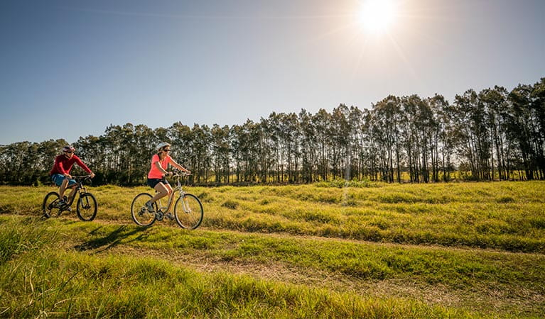 People cycling in Everlasting Swamp National Park in the late afternoon. Photo: John Spencer/OEH