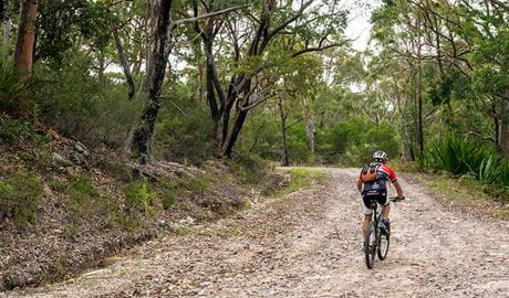 Cawleys Road trail, Garawarra State Conservation Area. Photo: John Spencer