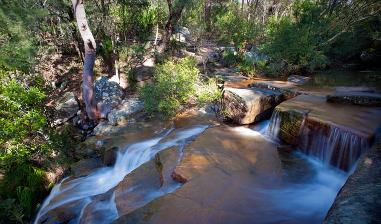Progressive Near Me >> Garawarra State Conservation Area | NSW National Parks