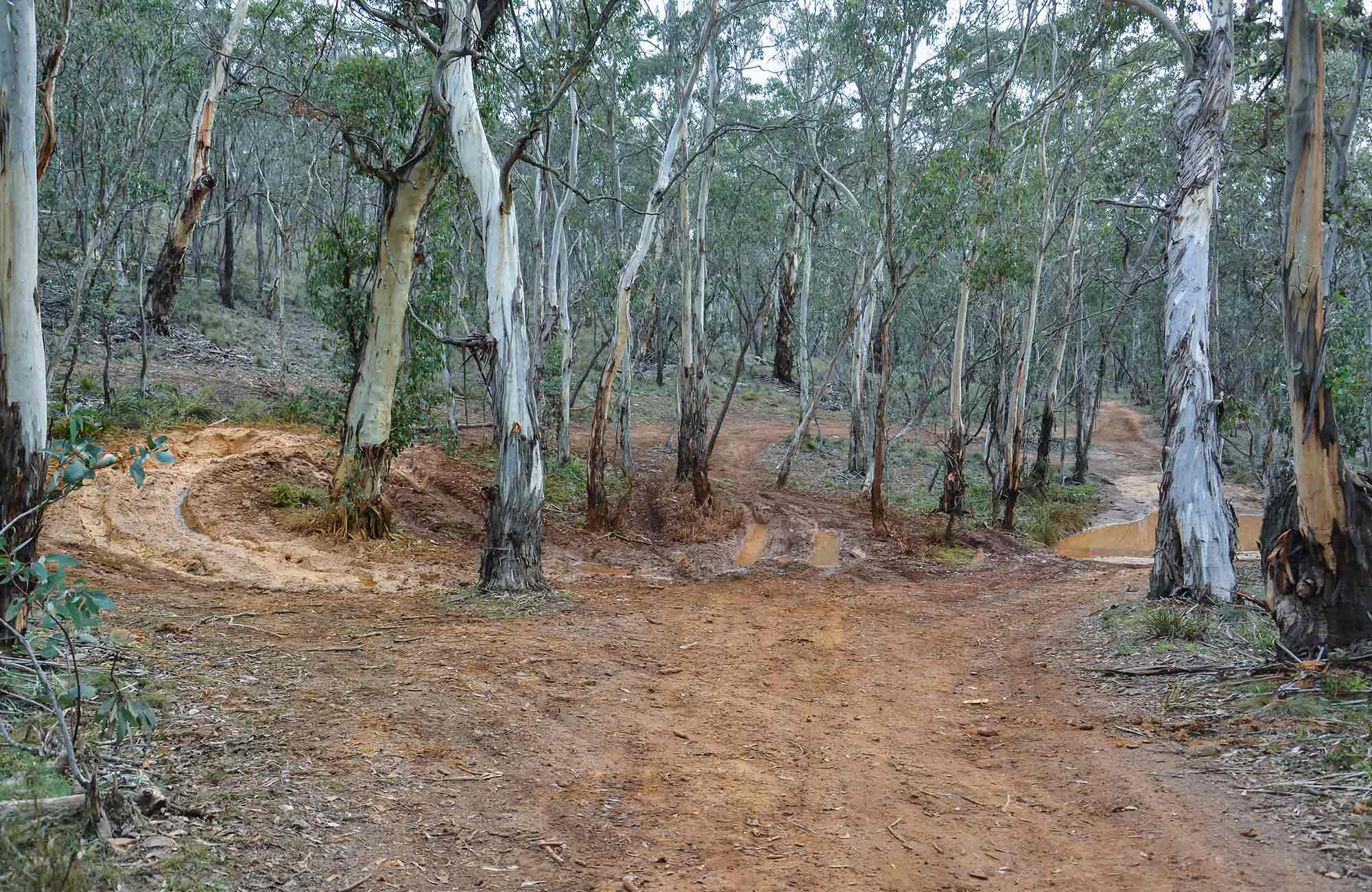 Ben Bullen trail, Gardens of Stone National Park. Photo: David Noble