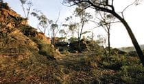 The Newnes Plateau Cliffs, Gardens of Stone National Park. Photo: R Nicolai Copyright:NSW Government