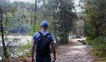 Walk alongside Middle Harbour Creek on Lyrebird trail in Garigal National Park. Photo: OEH/Natasha Webb