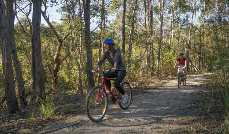 Two people riding their mountain bikes in Garigal National Park. Photo: John Spencer/OEH