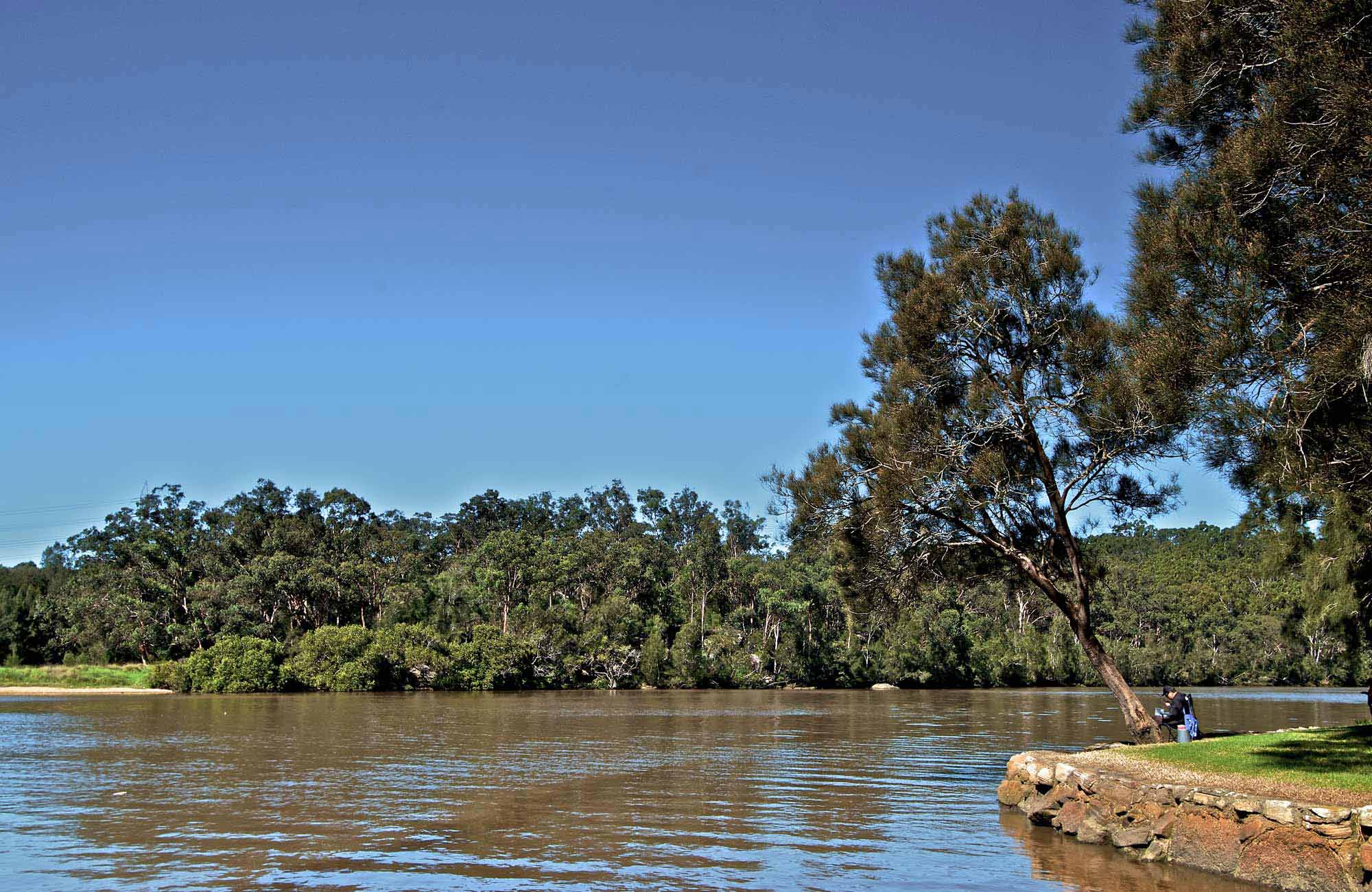 Fitzpatrick Park picnic area, Georges River National Park. Photo: John Spencer