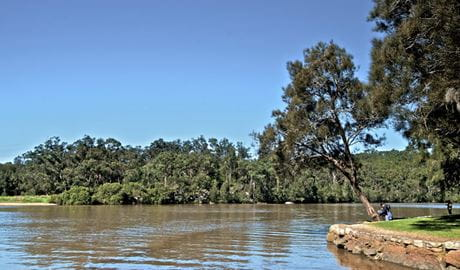 Fitzpatrick Park picnic area, Georges National Park. Photo: John Spencer