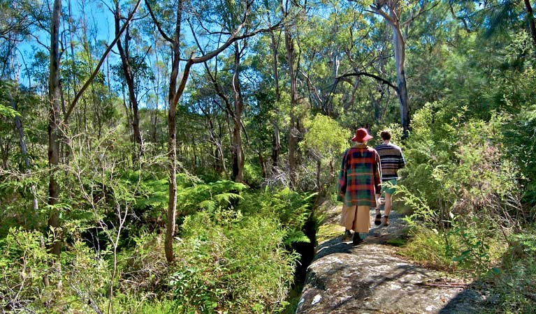 Yeramba Lagoon loop track, Georges River National Park. Photo: John Spencer