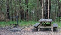 A picnic table and fire ring at Boundary Falls campground and picnic area, Gibraltar Range National Park. Photo: Robert Cleary/DPIE