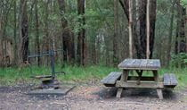 Boundry Creek Camping Picnic Area, Gibraltar Range National Park. Photo: seenaustralia.com.au