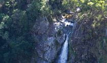 Lyrebird Falls walking track, Gibraltar Range National Park. Photo: Rob Cleary / Seen Australia