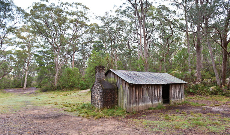 Exterior of a historic hut with a stone chimney and tin roof, set in a small clearing among tall trees in Gibraltar Range National Park. Photo: Robert Cleary © DPIE