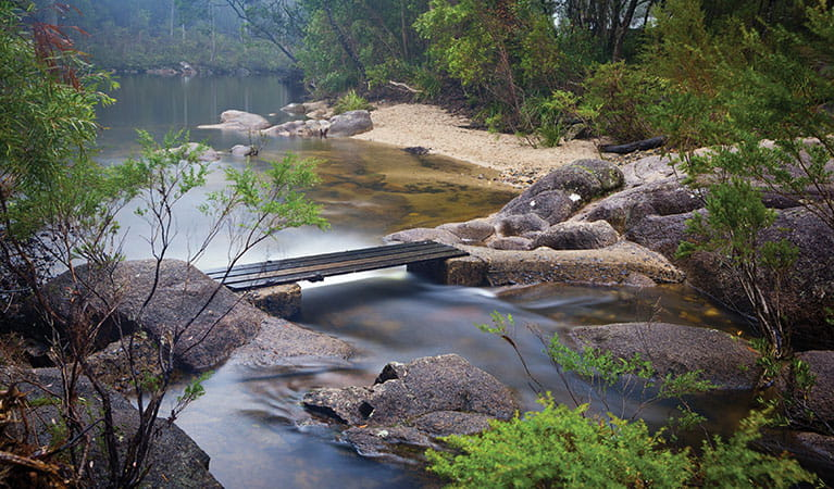 View of wood plank crossing over a flowing creek, with a pool and forest in the background. Photo: Robert Cleary © DPIE