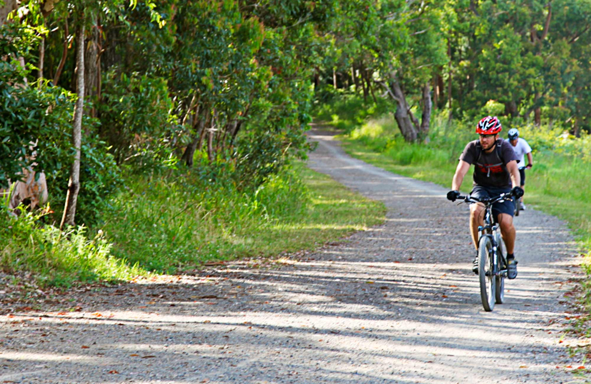 People mountain biking along a bush trail. Photo:Shaun Sursok