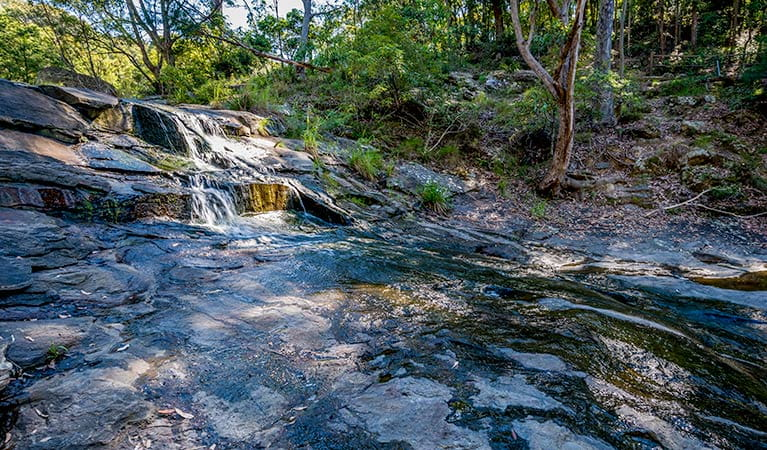 Bombala walking track, Glenrock State Conservation Area. Photo: John Spencer