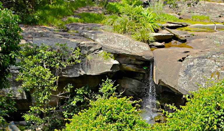 Waterfall on the Yuelarbah Track, Glenrock State Conservation Area. Photo: Shaun Sursok/NSW Government