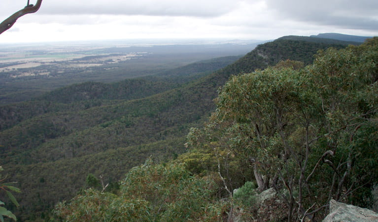 Burrabadine walking track landscape, Goobang National Park. Photo: A Lavender