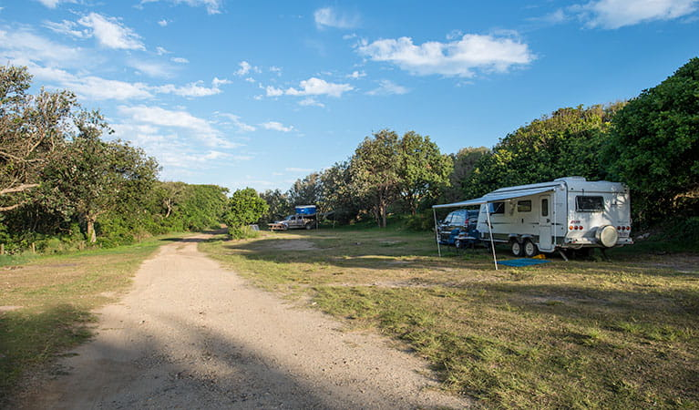 A caravan trailer and car on site at Racecourse campground, Goolawah National Park. Photo: John Spencer/OEH