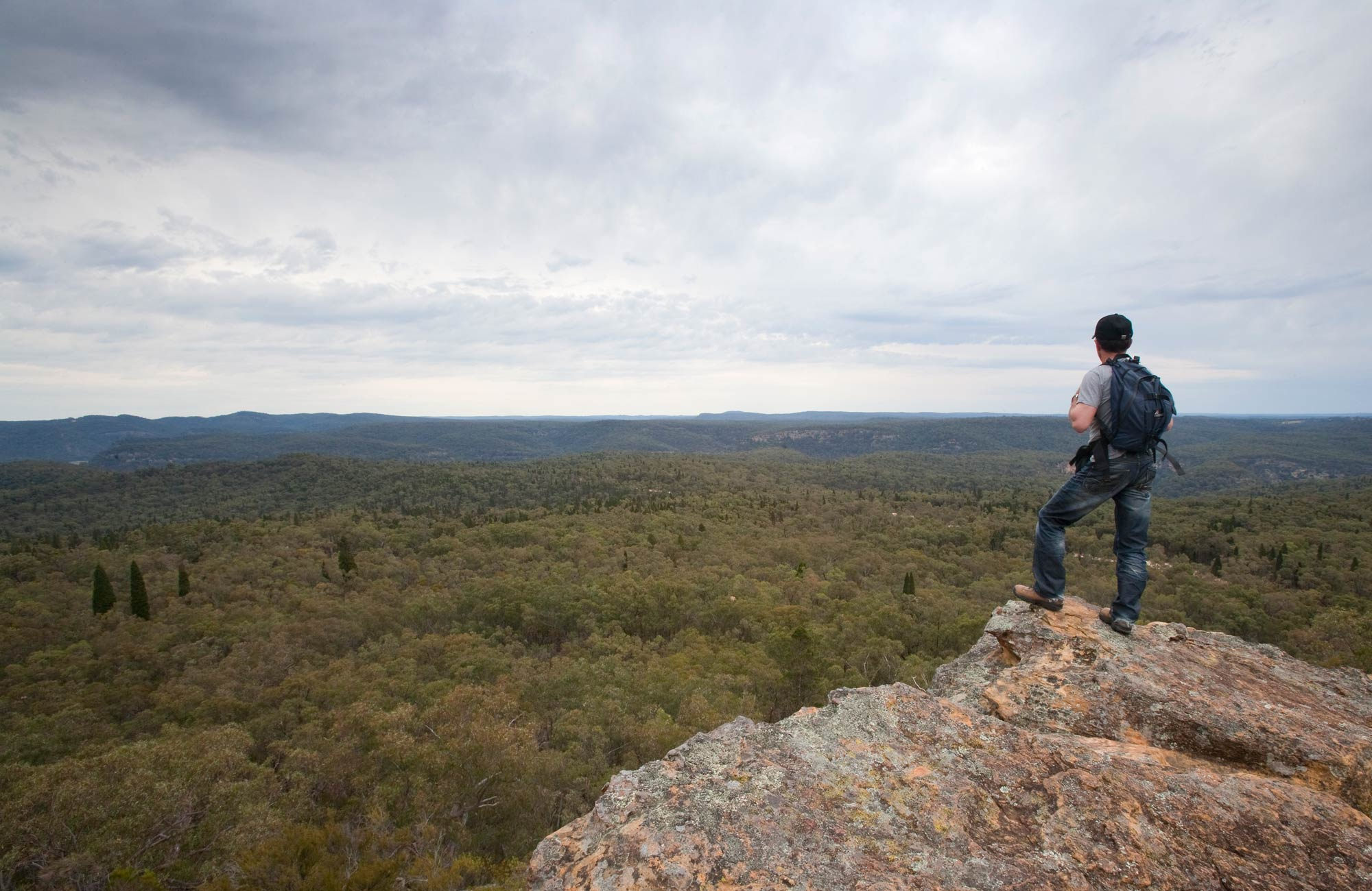 Lees Pinch lookout walking track, Goulburn River National Park. Photo: Nick Cubbin/NSW Government