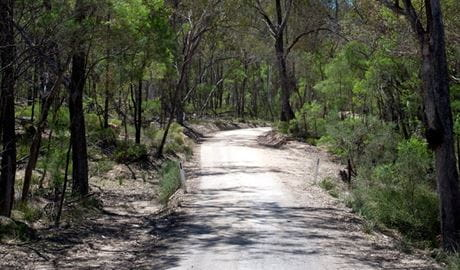 Big River drive, Goulburn River National Park. Photo: Nick Cubbin