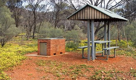 Barbecue and picnic table with shelter set in a clearing with yellow wildflowers. Photo credit: Leah Pippos © DPIE