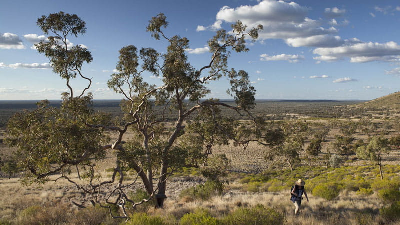 Two people walking in Gundabooka National Park. Photo: David Finnegan